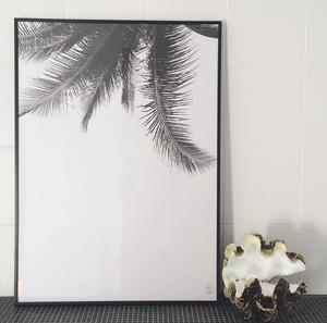 "Poster ""Under the palmtree""  (50x70cm)"