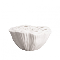 Coral Vas Vit Anemon