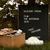 Letter board - House Doctor (45x60cm)