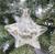 Julgranskula stjärna med frostig gren