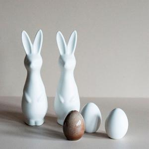 Rabbit vit - DBKD