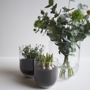Simple vas (medium) - DBKD