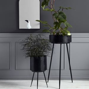 Indian planter i Metall M - Svart